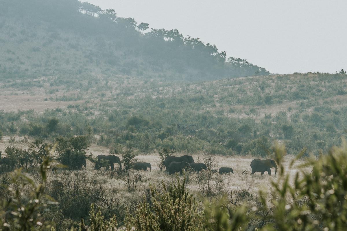 azambujas-na-africa-243