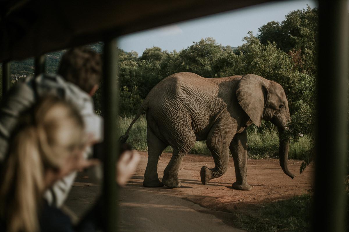 azambujas-na-africa-263