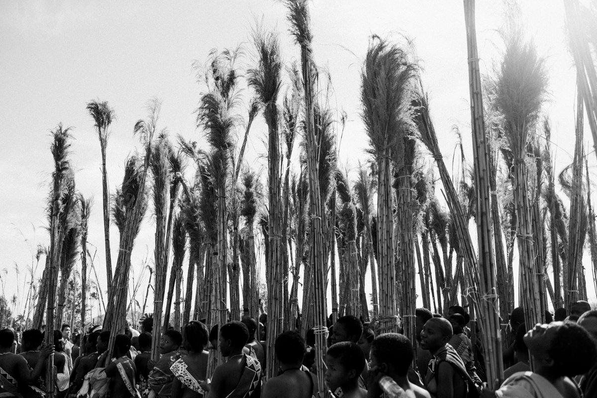 reed-dance-2018-108