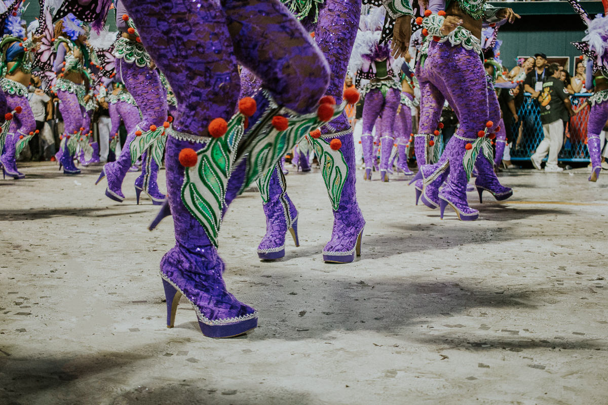 desfile-grupo-especial-escola-de-samba-rio-de-janeiro-brasil-2019-carnaval-31